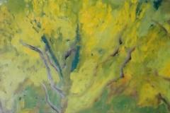 Albero giallo - 50 x 35