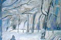 Giardino con la neve - 50 x 35